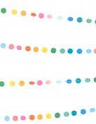 Mini ghirlanda decorativa multicolore