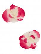 2 orchidee galleggianti fucsia