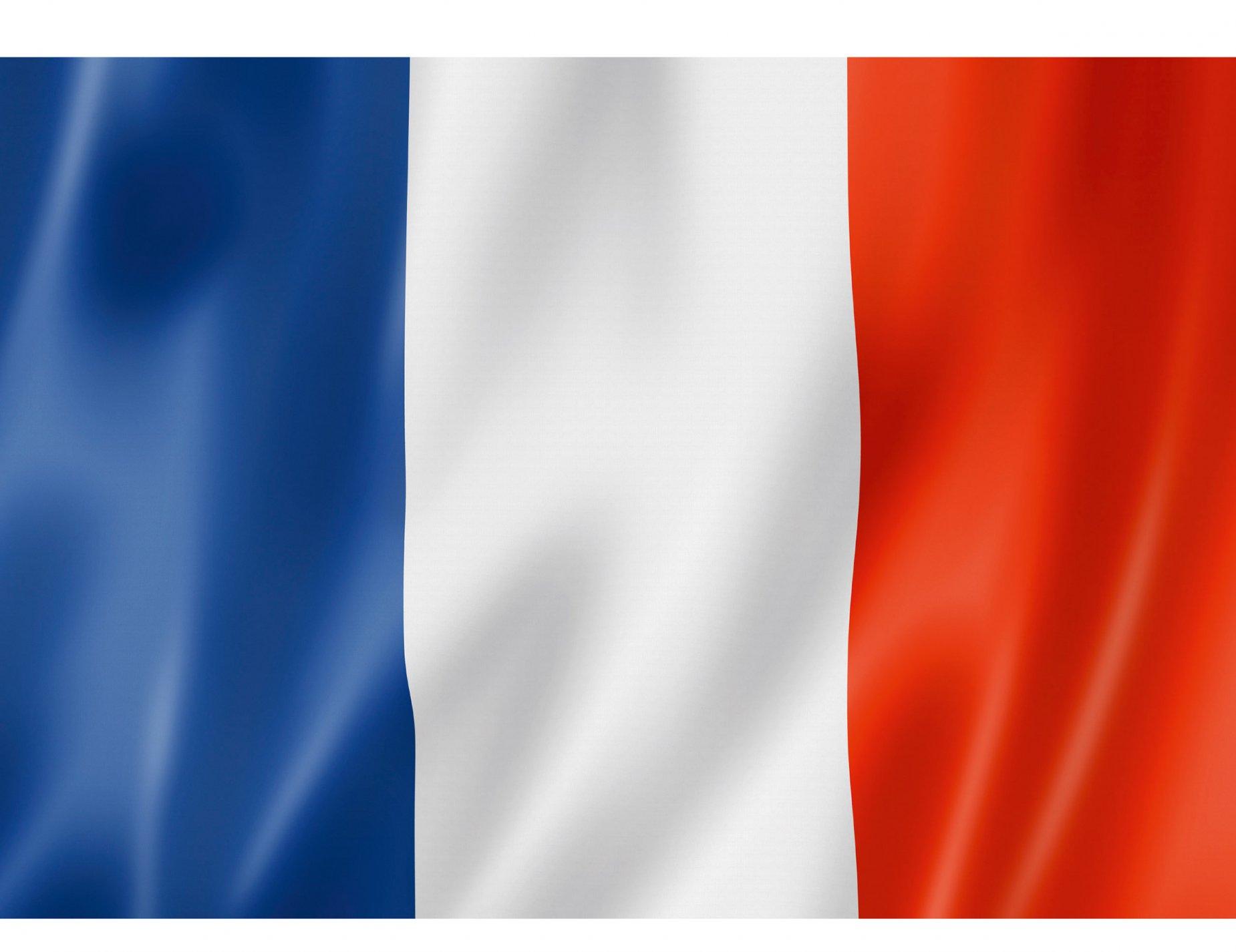 Bandiera Francese Su Vegaooparty Negozio Di Articoli Per Feste