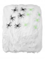 Decorazione ragnatela bianca con ragni per Halloween