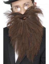 Barba lunga marrone per adulto