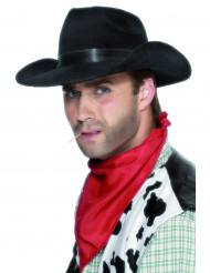 Cappello da vero cowboy