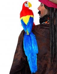 Pappagallo colorato da pirata