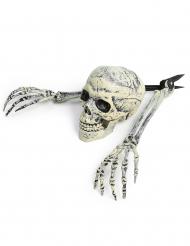 Decorazione scheletro Halloween