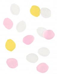 Coriandoli petali di rosa