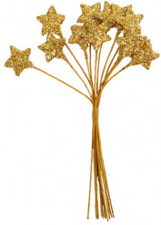 Bouquet con 12 stelle dorate