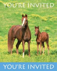8 biglietti di invito Cavalli selvaggi