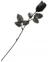 Rosa nera per Halloween