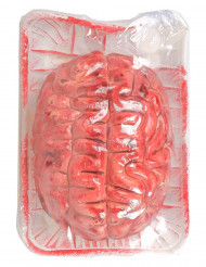 Confezione con cervello insanguinato per Halloween