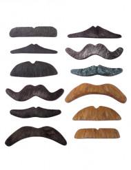 12 baffi colori e forme varie