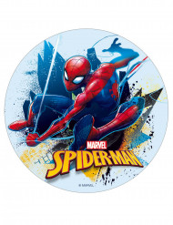 Disco di zucchero Spiderman™