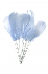 12 Piume azzurro cielo con punte