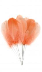 12 piume color rosa pesca con stelo metallico