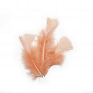 18 piume color pesca da 14 cm