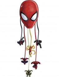 Pignatta Spiderman Web Warriors™ in carta