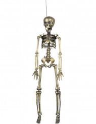 Decorazione da sospendere scheletro dorato