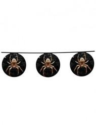 Ghirlanda decorativa ragni Halloween