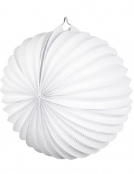Lanterna a sfera bianca diametro 23 cm