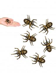 6 scarabei dorati per Halloween