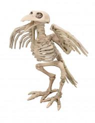 Decorazione scheletro di corvo Halloween
