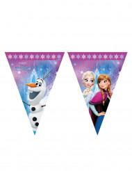 Ghirlanda di plastica Frozen™