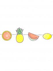 Mini ghirlanda con frutta esotica