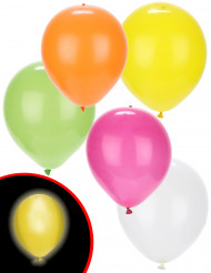 5 palloncini a LED summer party Illooms™