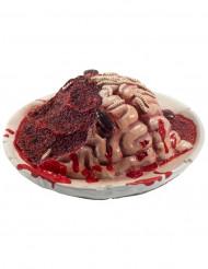 Decorazione piatto con cervello in decomposizione