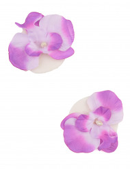 2 orchidee galleggianti lilla