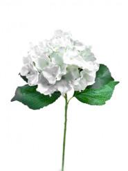 Fiore di ortensia artificiale