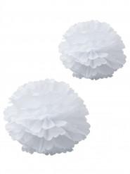 2 pon pon in carta velina bianchi 40 e 50 cm