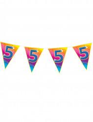 Ghirlanda di bandierine colorate 5 anni