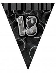 Ghirlanda con bandierine grigia 18 anni