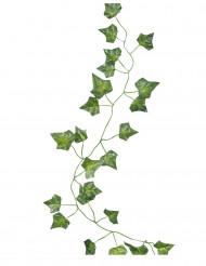 5 ghirlande con foglie di vite