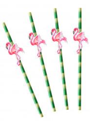 20 cannucce in cartone bambù con fenicotteri