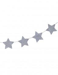 Ghirlanda con stelle argentate