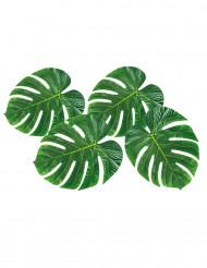 4 tovagliette foglie tropicali