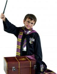 Baule con travestimento Harry Potter™ per bambino