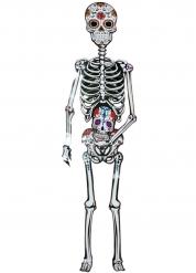 Decorazione in cartone scheletro Dia de los muertos