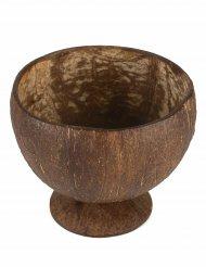 Coppa noce di cocco naturale Hawaii