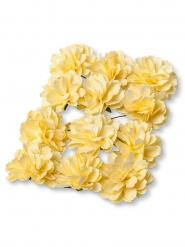 12 piccole peonie gialle di carta