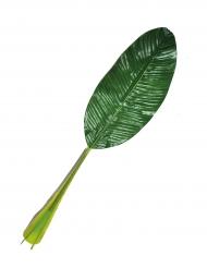 Decorazione foglia verde hawaiana
