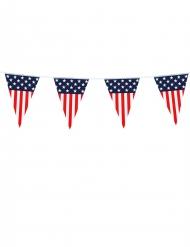 Ghirlanda di bandierine American party