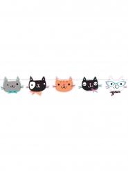 Ghirlanda con gattini multicolor