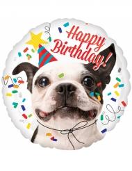 Palloncino alluminio Happy Birthday cane