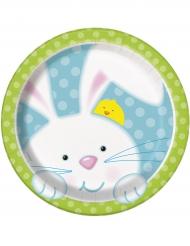 8 piatti piccoli Coniglietto di Pasqua in cartone 18 cm