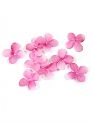 24 decorazioni fiori fucsia
