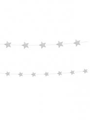 2 ghirlande di stelle argentate