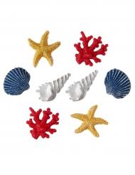 8 conchiglie decorative colorate