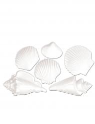 6 conchiglie decorative in plastica bianca